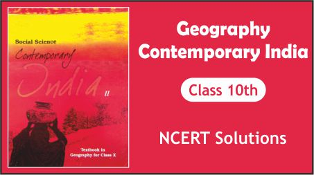 CBSE Class 10th Geography (Contemporary India 2) NCERT Solution