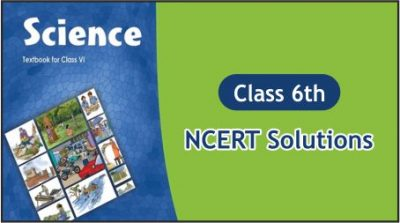 CBSE Class 6th Science NCERT Solutions