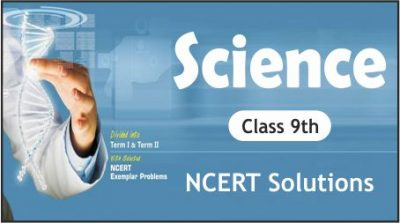 CBSE Class 9th Science NCERT Solutions