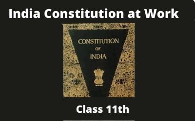 Download Free Class 11th India Constitution at Work NCERT Solutions 2020-21 in PDF