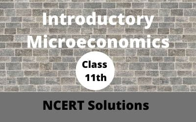 Download Free Class 11th Introductory Microeconomics NCERT Solutions 2020-21 in PDF