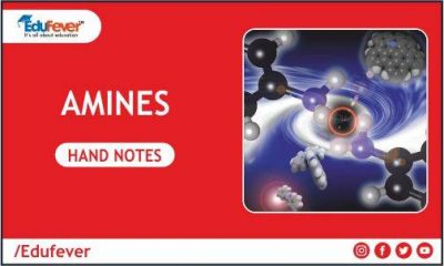 Amines hand Written Notes