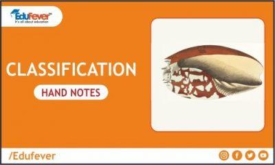 Classification Hand Written Notes for NEET
