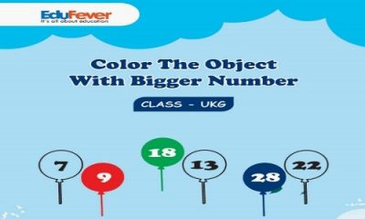 Color the Object with Bigger Number UKG Worksheets