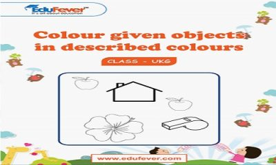 Colour given Objects in Described colours UKG Worksheets