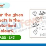 Colour Given Objects in Described Colours
