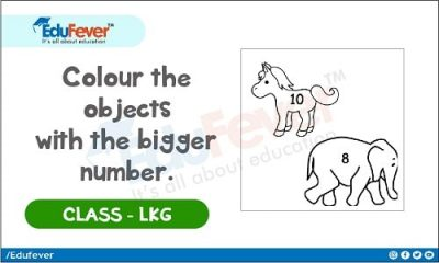 Color The Object With Bigger Number