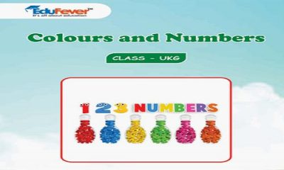 Colours and Numbers UKG Worksheets