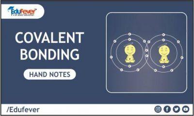 Covalent Bonding Hand Written Notes