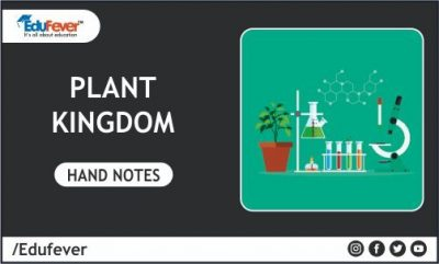 Plant Kingdom Hand Written Notes