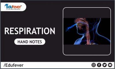 Respiration Hand Written Notes