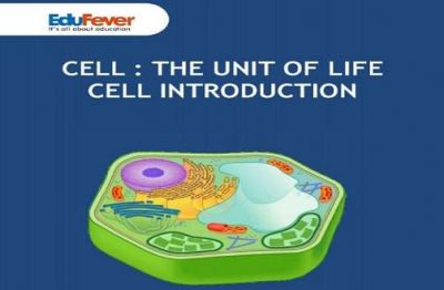 Cell- The Unit of Life Cell Introduction Revision Notes