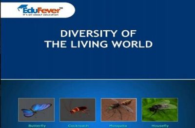 Diversity of the Living World Revision Notes