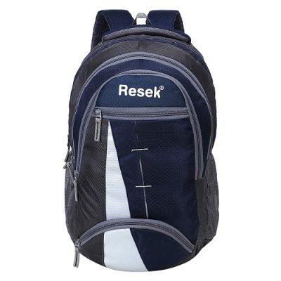 Resek Grey Blue Printed School Bags 16.5 inch Laptop Backpack