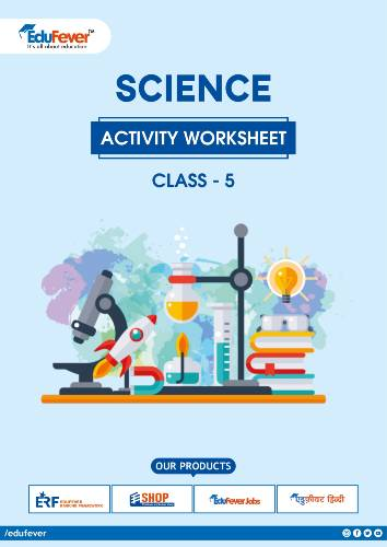 Class 5 Science Activity Worksheet