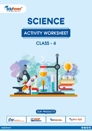 Class 4 Science Activity Worksheet